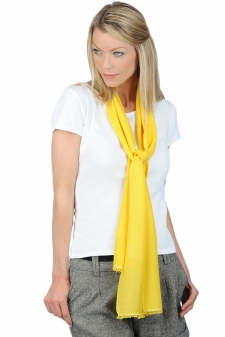 accessories scarves--mufflers scarva