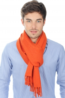 accessories scarves--mufflers zak200