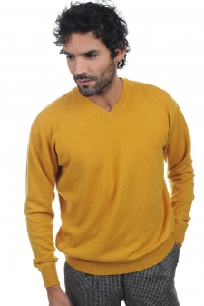 Cashmere  men v necks gaspard