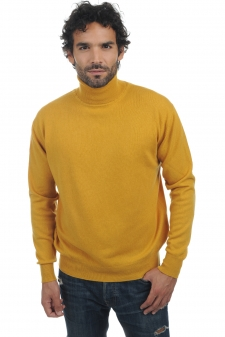 Cashmere  men roll neck edgar